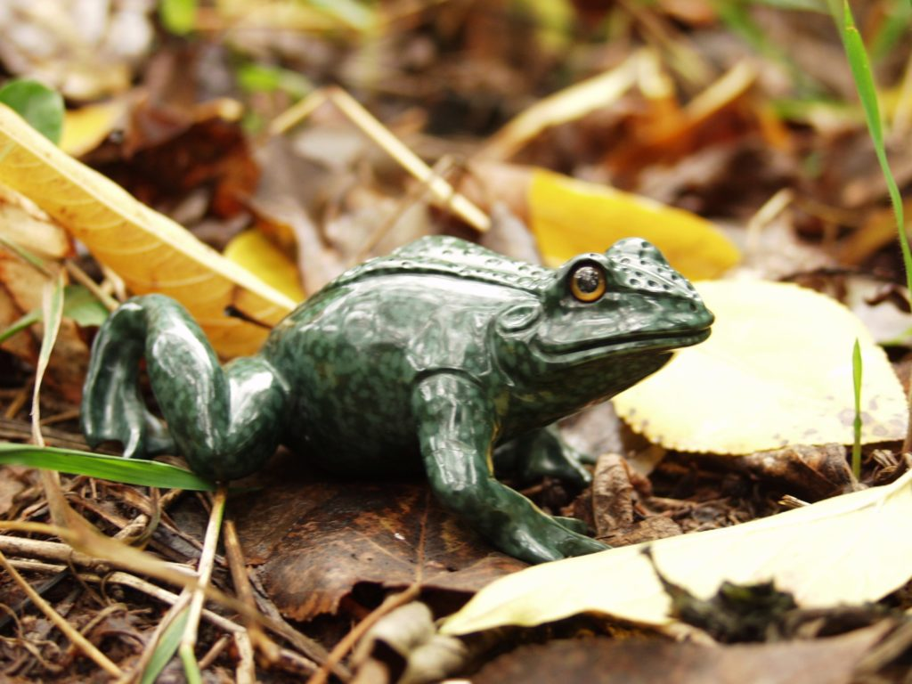 Gemstone carving artwork Frog by stone carver artist Dmitriy Emelyanenko