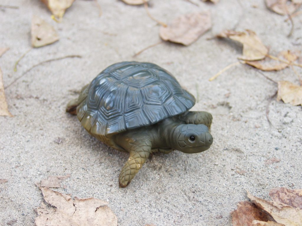 Stone carving artwork Turtle by stone carver Dmitriy Emelyanenko