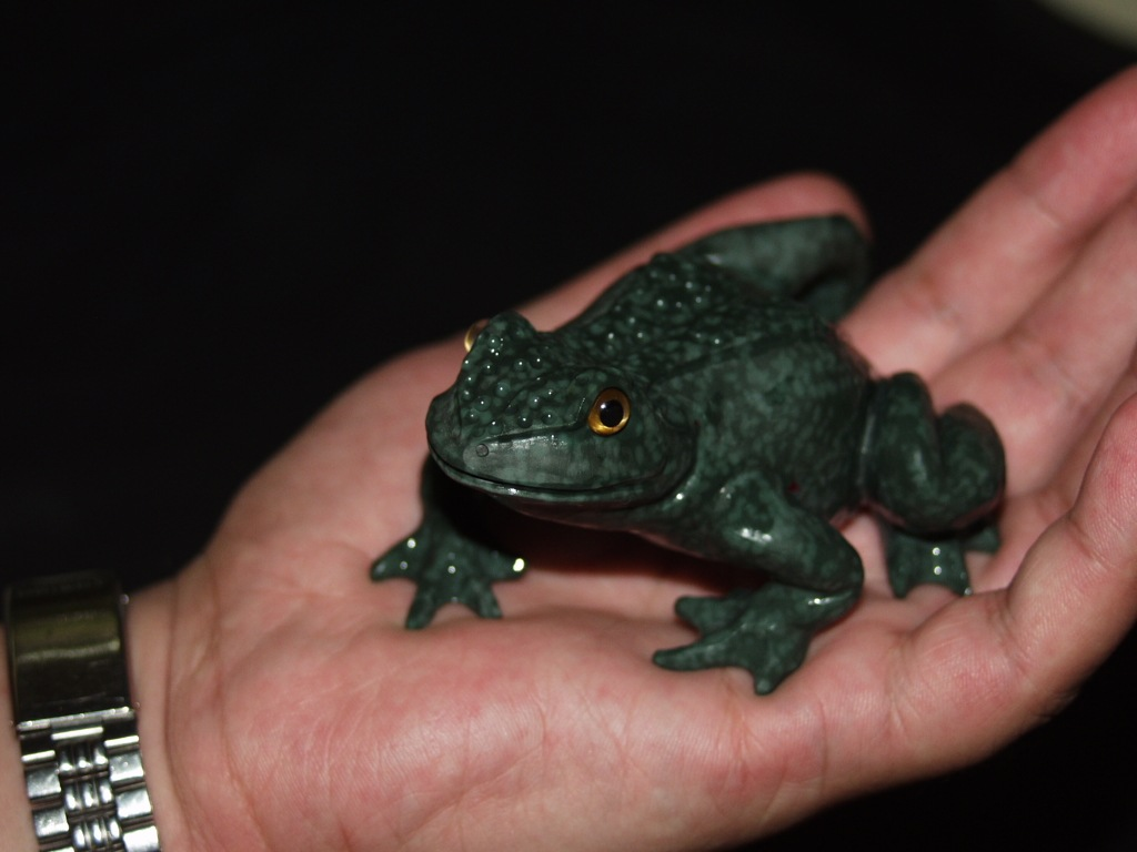 Stone frog by Dmitriy Emelyanenko