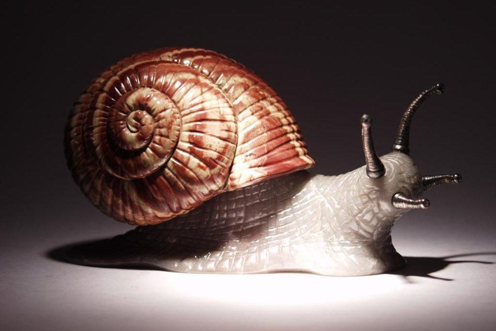Stone snail by Dmitriy Emelyanenko