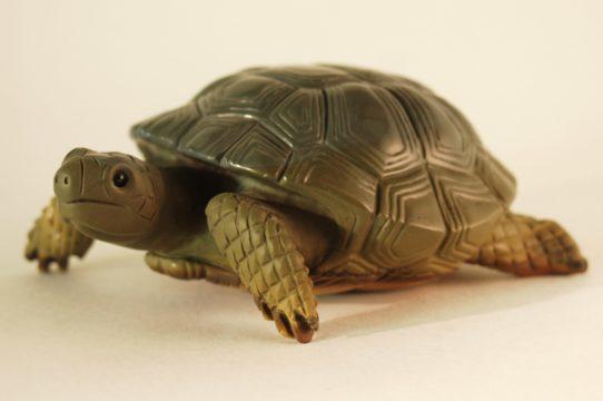 Stone turtle by stone carver Dmitriy Emelyanenko